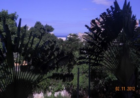 Caraballeda,Vargas,2 Habitaciones Habitaciones,1 BañoLavabos,Apartamento,1018